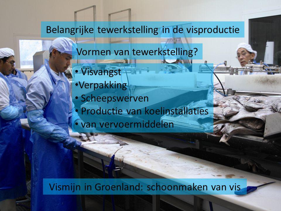 Vismijn in Groenland: schoonmaken van vis Belangrijke tewerkstelling in de visproductie Vormen van tewerkstelling? Visvangst Verpakking Scheepswerven