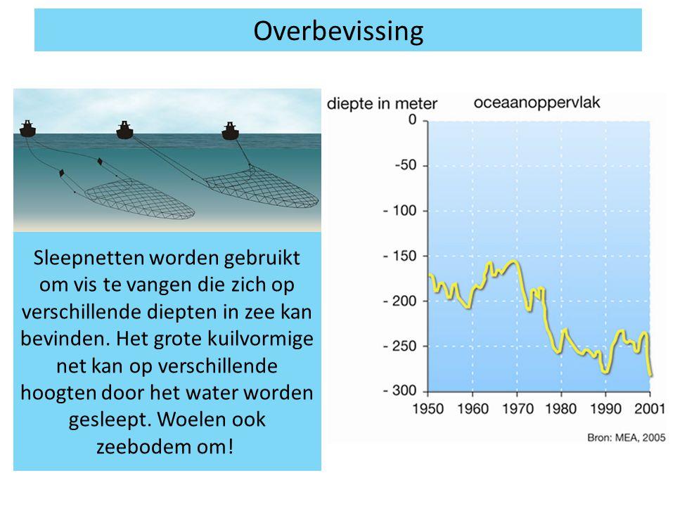 Overbevissing Sleepnetten worden gebruikt om vis te vangen die zich op verschillende diepten in zee kan bevinden. Het grote kuilvormige net kan op ver