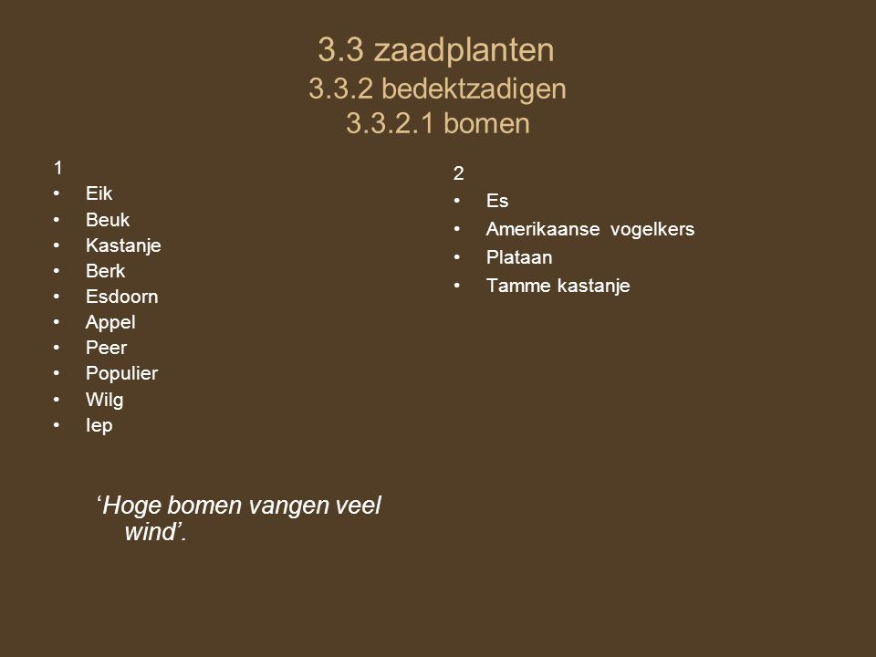 3.3 zaadplanten 3.3.2 bedektzadigen 3.3.2.1 bomen 1 Eik Beuk Kastanje Berk Esdoorn Appel Peer Populier Wilg Iep 'Hoge bomen vangen veel wind'. 2 Es Am