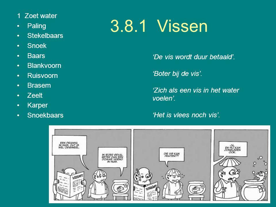 3.8.1 Vissen 1 Zoet water Paling Stekelbaars Snoek Baars Blankvoorn Ruisvoorn Brasem Zeelt Karper Snoekbaars 'De vis wordt duur betaald'. 'Boter bij d