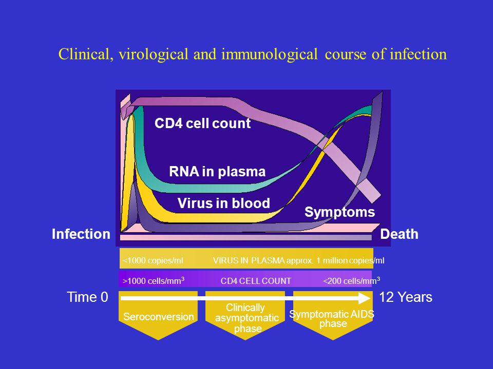 Clinical, virological and immunological course of infection Clinically asymptomatic phase Seroconversion Symptomatic AIDS phase Time 012 Years <1000 c