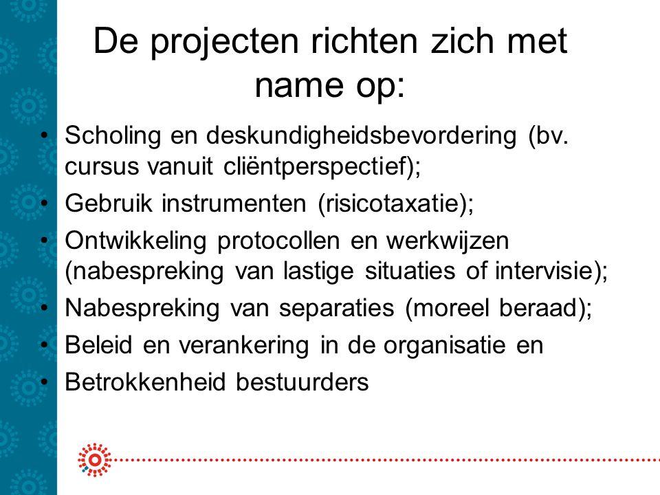 De projecten richten zich met name op: Scholing en deskundigheidsbevordering (bv. cursus vanuit cliëntperspectief); Gebruik instrumenten (risicotaxati