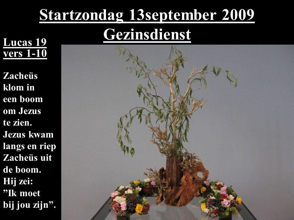 Startzondag 13september 2009 Gezinsdienst Lucas 19 vers 1-10 Zacheüs klom in een boom om Jezus te zien. Jezus kwam langs en riep Zacheüs uit de boom.