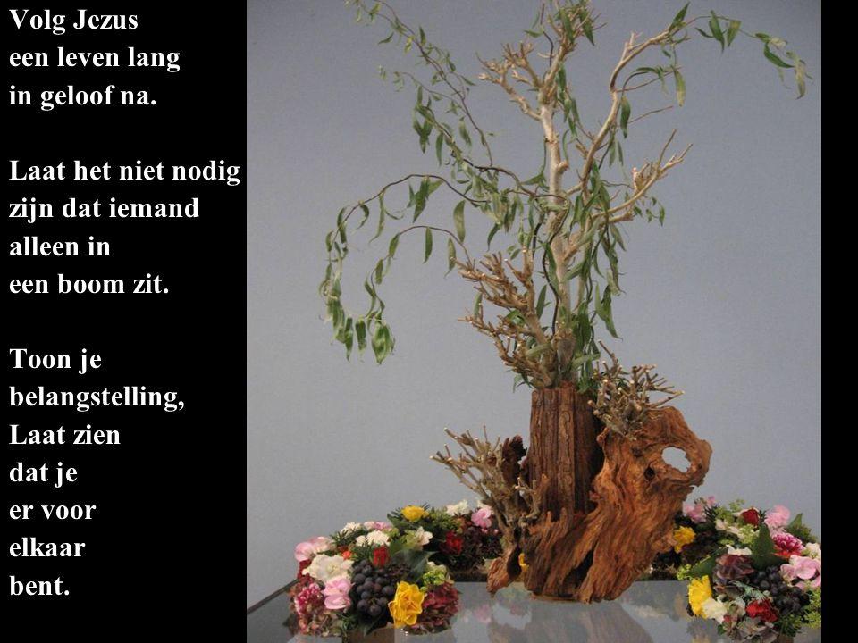 Volg Jezus een leven lang in geloof na. Laat het niet nodig zijn dat iemand alleen in een boom zit. Toon je belangstelling, Laat zien dat je er voor e