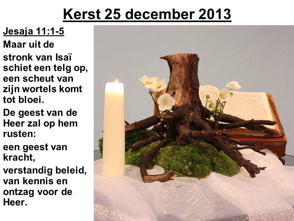 Kerst 25 december 2013 Jesaja 11:1-5 Maar uit de stronk van Isaï schiet een telg op, een scheut van zijn wortels komt tot bloei. De geest van de Heer