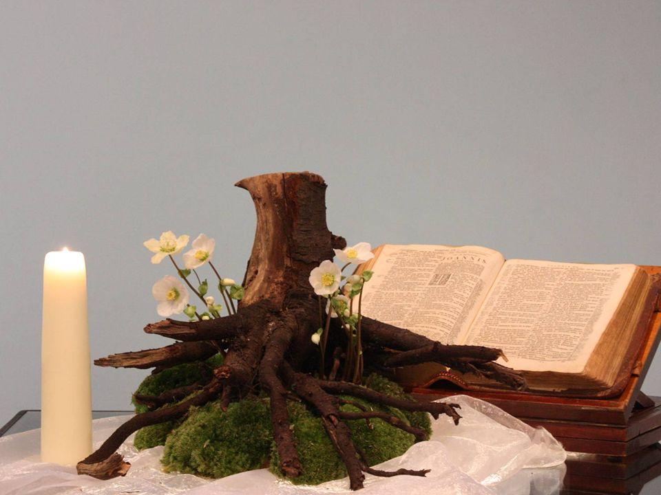 Hij ademt ontzag voor de Heer; zijn oordeel stoelt niet op uiterlijke schijn, nog grondt hij zijn vonnis op geruchten.