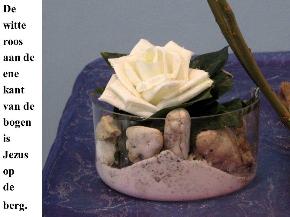 De witte roos aan de ene kant van de bogen is Jezus op de berg.