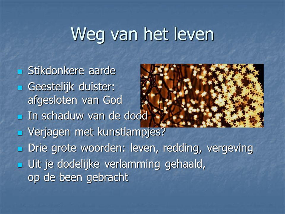Weg naar Gods hart Spoor van het licht volgen … … tot in het hart van God.