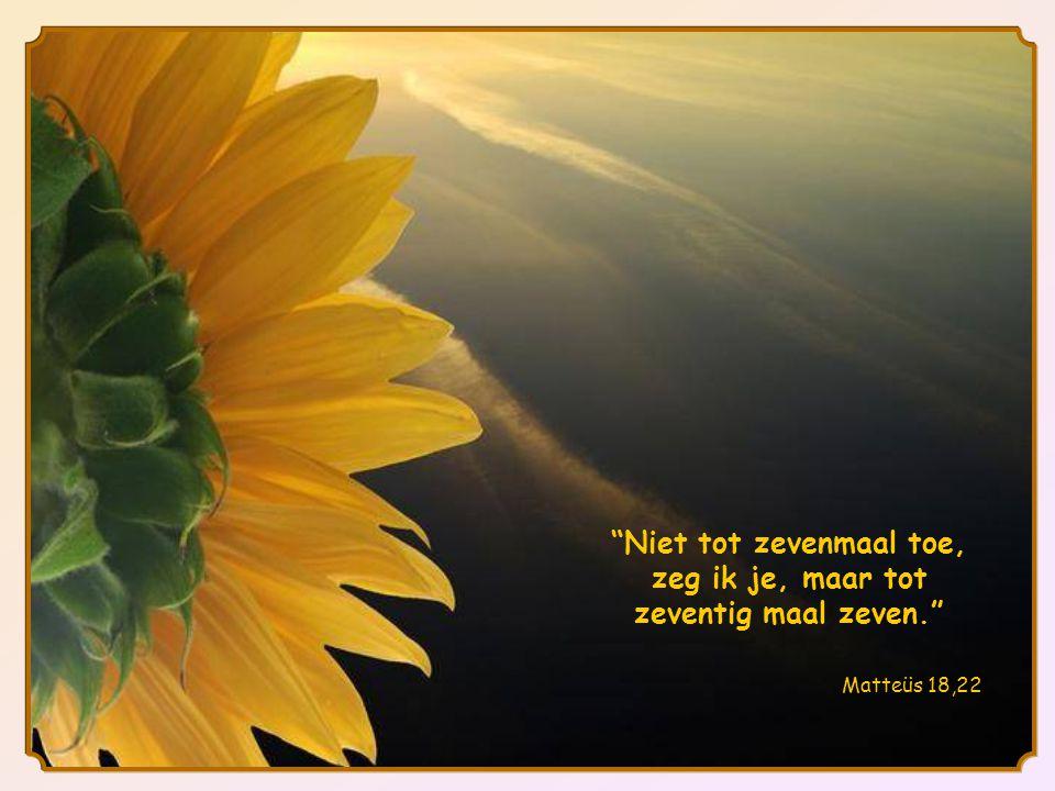 Maar Jezus antwoordt: ...tot zeventig maal zeven .