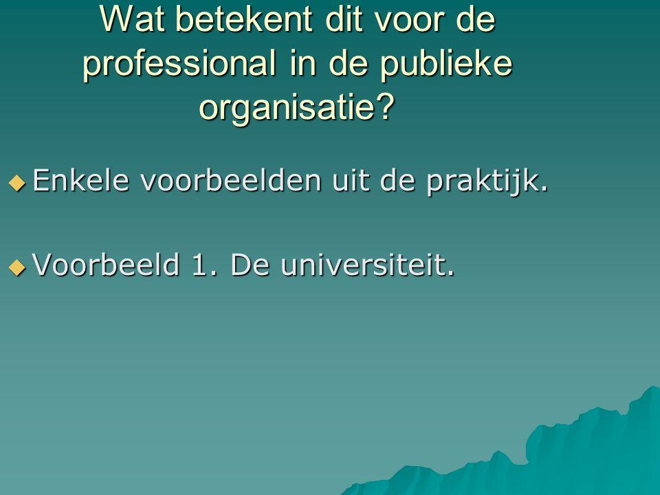 Wat betekent dit voor de professional in de publieke organisatie.