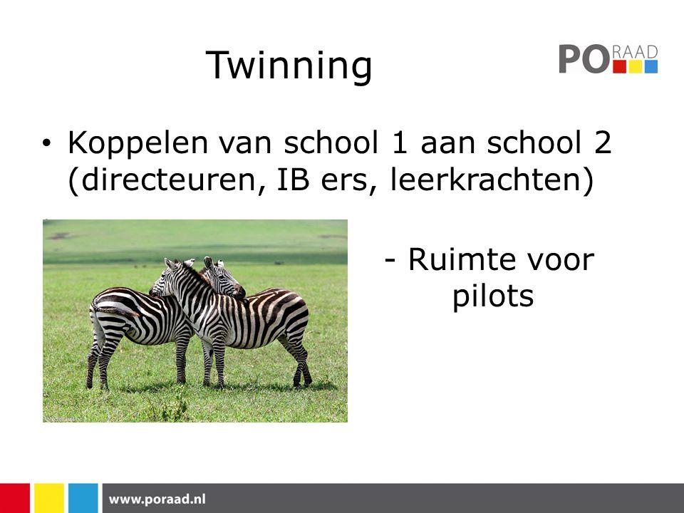 Twinning Koppelen van school 1 aan school 2 (directeuren, IB ers, leerkrachten) - Ruimte voor pilots
