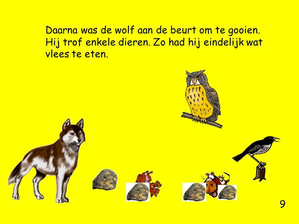 Daarna was de wolf aan de beurt om te gooien. Hij trof enkele dieren. Zo had hij eindelijk wat vlees te eten. 9