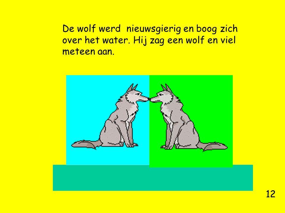 De wolf werd nieuwsgierig en boog zich over het water. Hij zag een wolf en viel meteen aan. 12