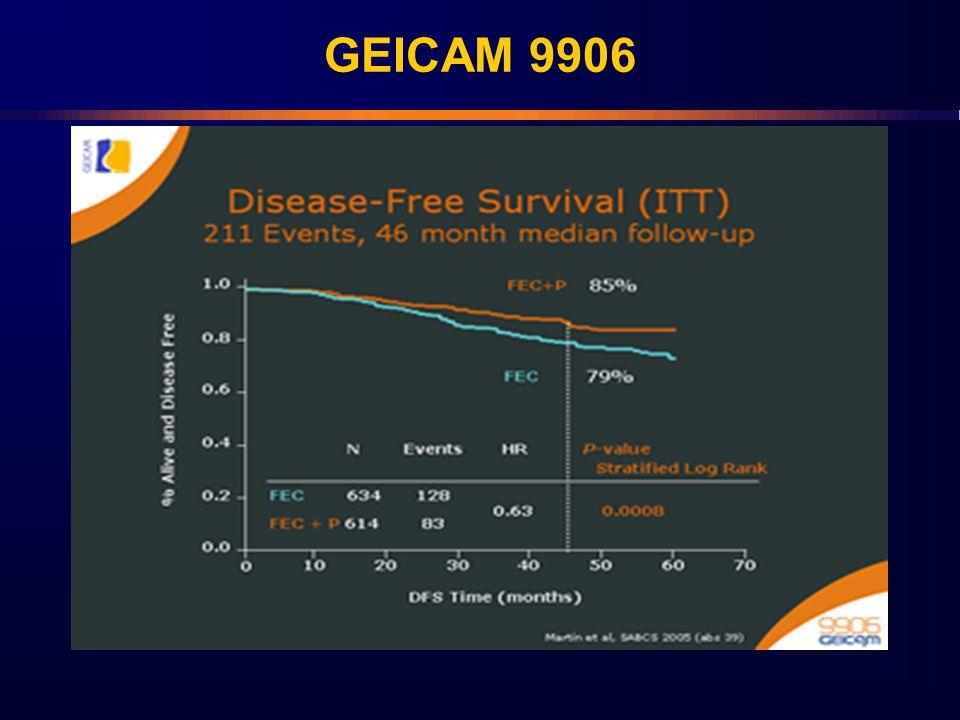 GEICAM 9906