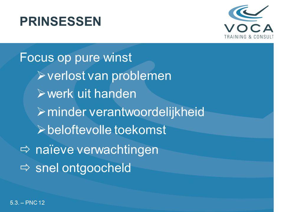 PRINSESSEN Focus op pure winst  verlost van problemen  werk uit handen  minder verantwoordelijkheid  beloftevolle toekomst  naïeve verwachtingen  snel ontgoocheld 5.3.
