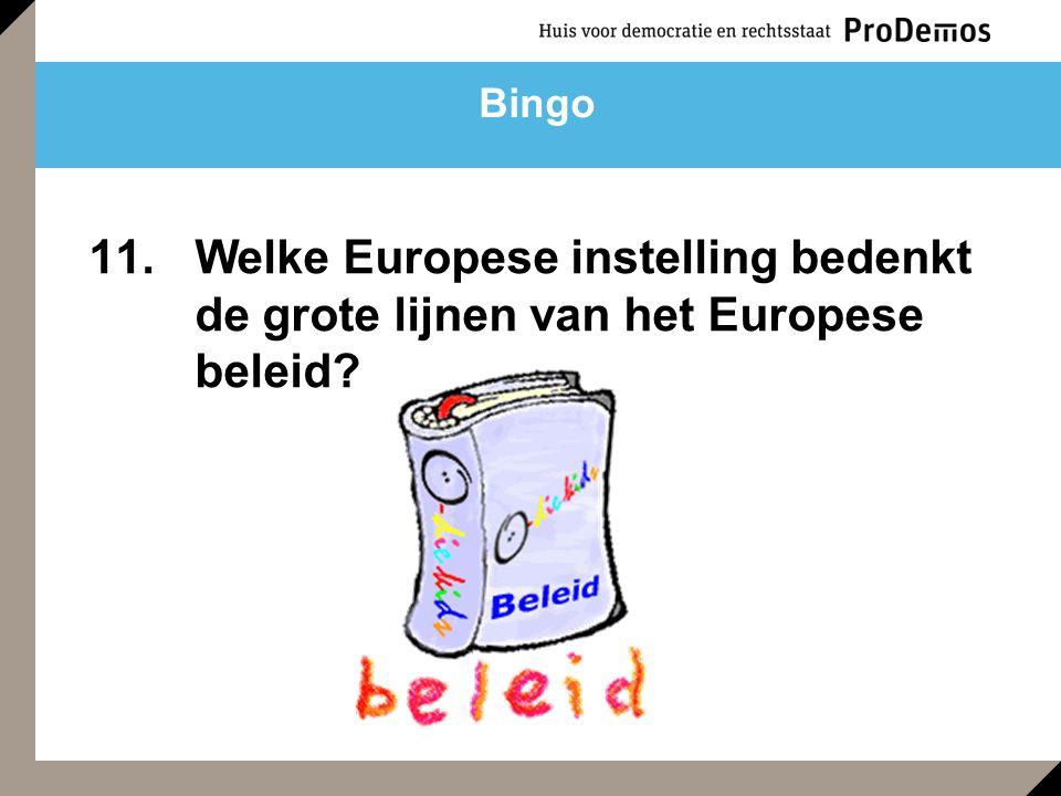 11. Welke Europese instelling bedenkt de grote lijnen van het Europese beleid Bingo