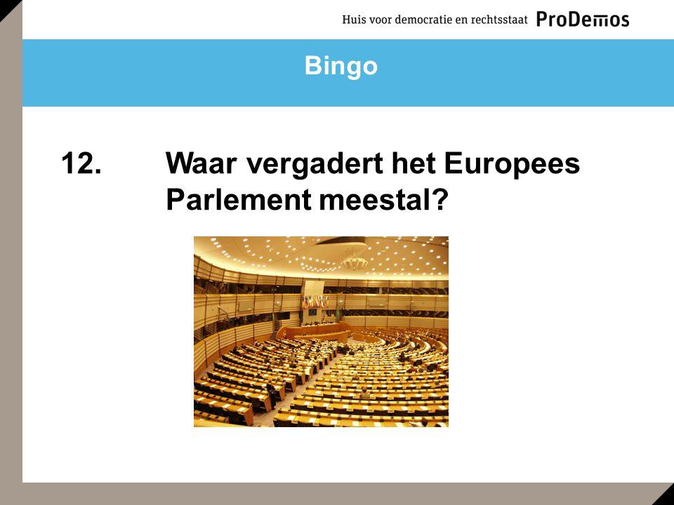 12. Waar vergadert het Europees Parlement meestal?
