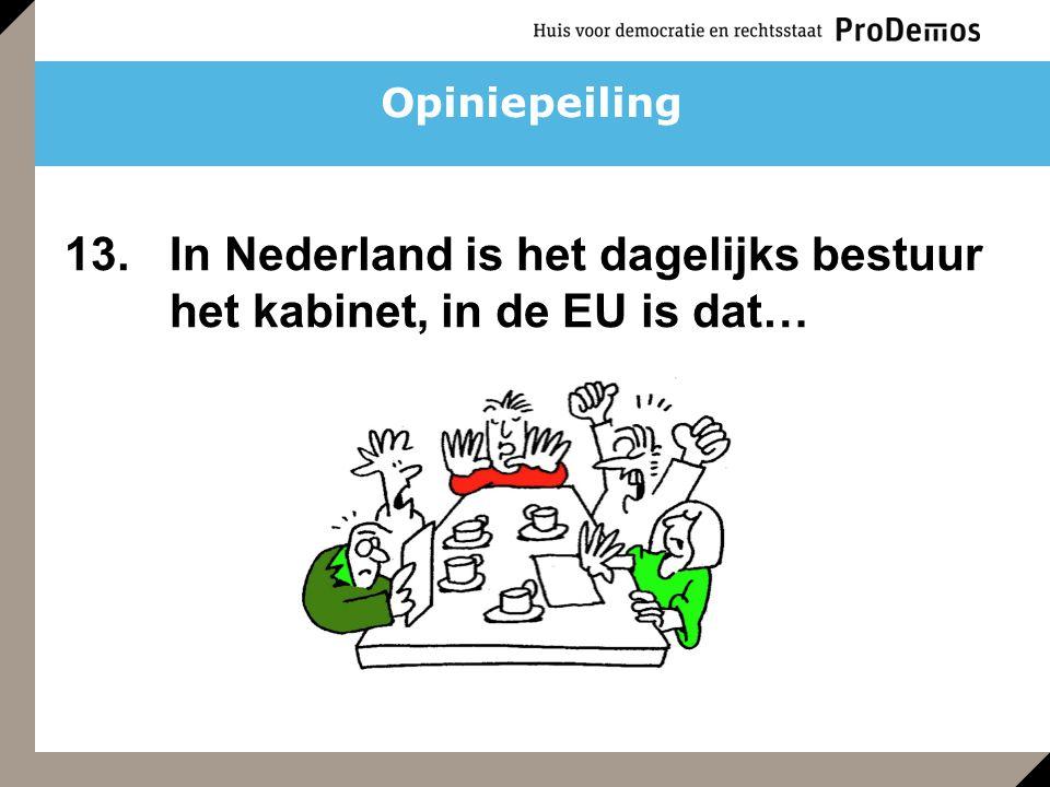 Opiniepeiling 13. In Nederland is het dagelijks bestuur het kabinet, in de EU is dat…