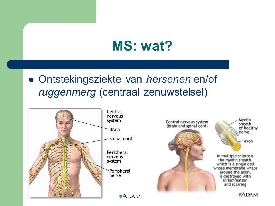 MS: wat? Ontstekingsziekte van hersenen en/of ruggenmerg (centraal zenuwstelsel)