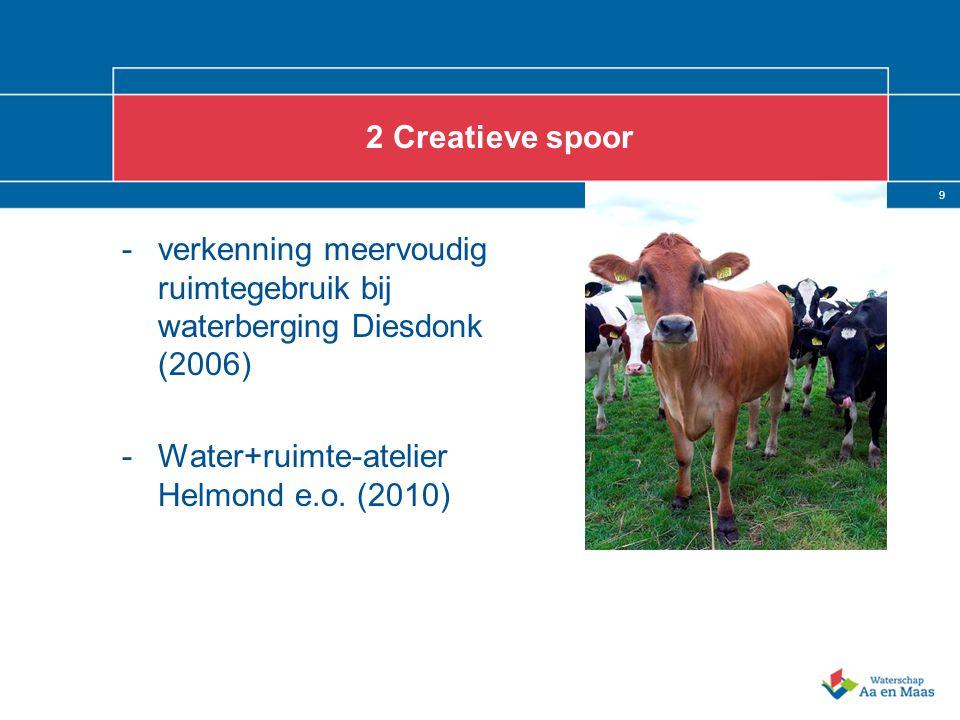 9 2 Creatieve spoor -verkenning meervoudig ruimtegebruik bij waterberging Diesdonk (2006) -Water+ruimte-atelier Helmond e.o. (2010)