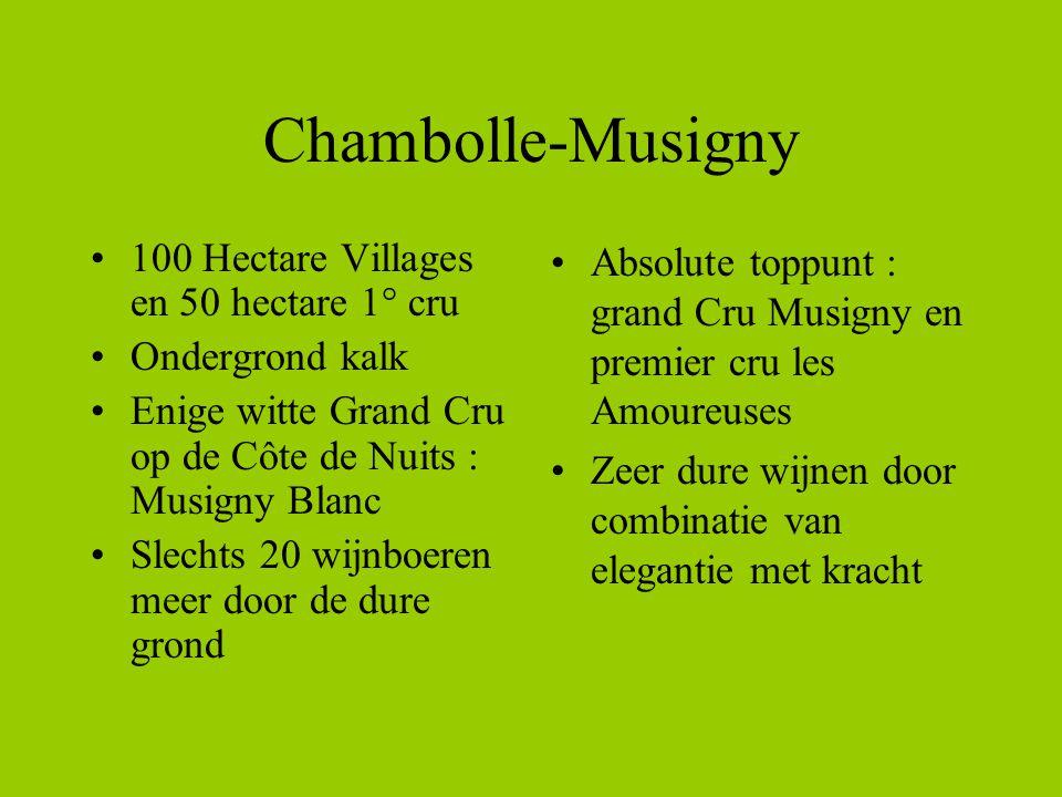 Chambolle-Musigny 100 Hectare Villages en 50 hectare 1° cru Ondergrond kalk Enige witte Grand Cru op de Côte de Nuits : Musigny Blanc Slechts 20 wijnb