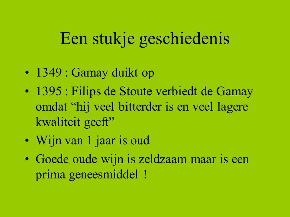 """Een stukje geschiedenis 1349 : Gamay duikt op 1395 : Filips de Stoute verbiedt de Gamay omdat """"hij veel bitterder is en veel lagere kwaliteit geeft"""" W"""