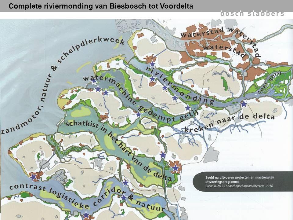 Complete riviermonding van Biesbosch tot Voordelta
