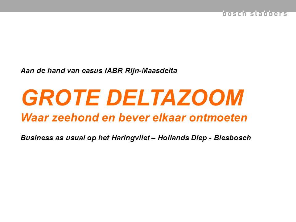 Aan de hand van casus IABR Rijn-Maasdelta GROTE DELTAZOOM Waar zeehond en bever elkaar ontmoeten Business as usual op het Haringvliet – Hollands Diep - Biesbosch