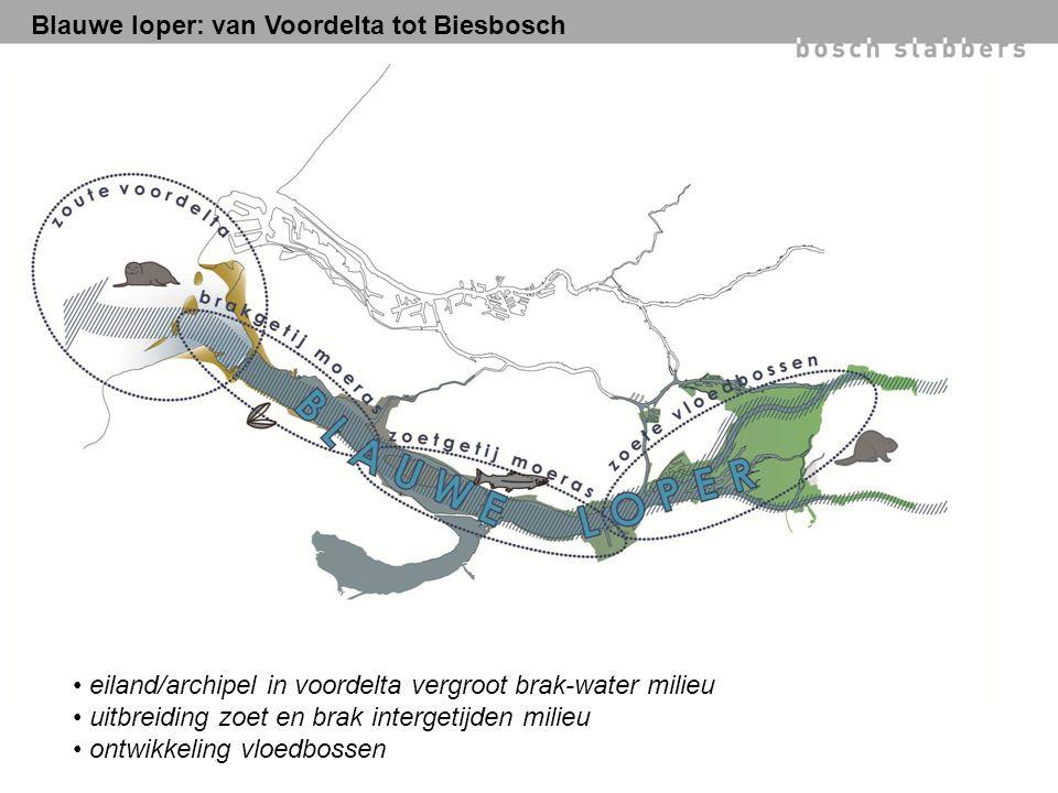 Blauwe loper: van Voordelta tot Biesbosch eiland/archipel in voordelta vergroot brak-water milieu uitbreiding zoet en brak intergetijden milieu ontwikkeling vloedbossen