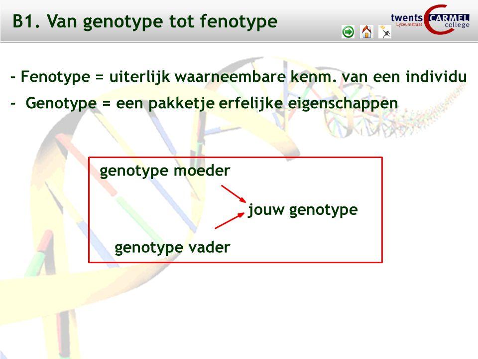 © 2009 Biosoft TCC - Lyceumstraat Determinatie van de cel: Door de verschillen in cytoplasma en de invloed van inducerende stoffen komt al in een vroeg stadium (tijdens de embryonale ontwikkeling) vast te liggen welke specialisatie een cel zal ondergaan.