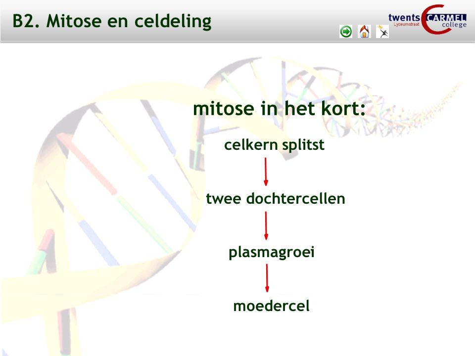 © 2009 Biosoft TCC - Lyceumstraat B6 VIRUSSEN afb. 25 afb. 26 B6. DE GENETISCHE CODE