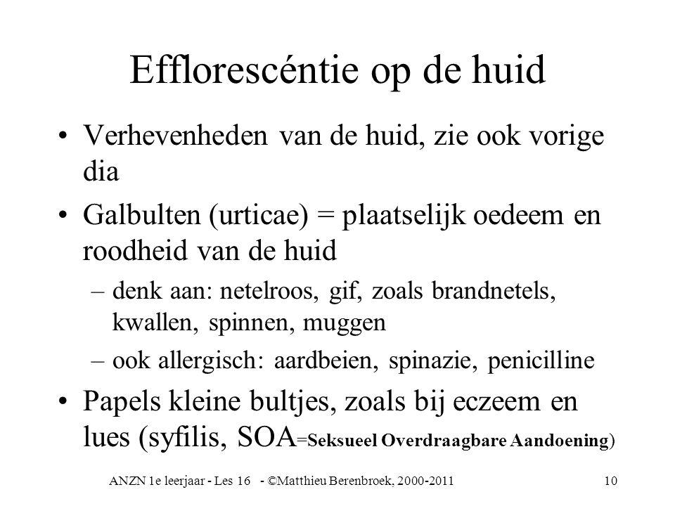 ANZN 1e leerjaar - Les 16 - ©Matthieu Berenbroek, 2000-201110 Efflorescéntie op de huid Verhevenheden van de huid, zie ook vorige dia Galbulten (urtic