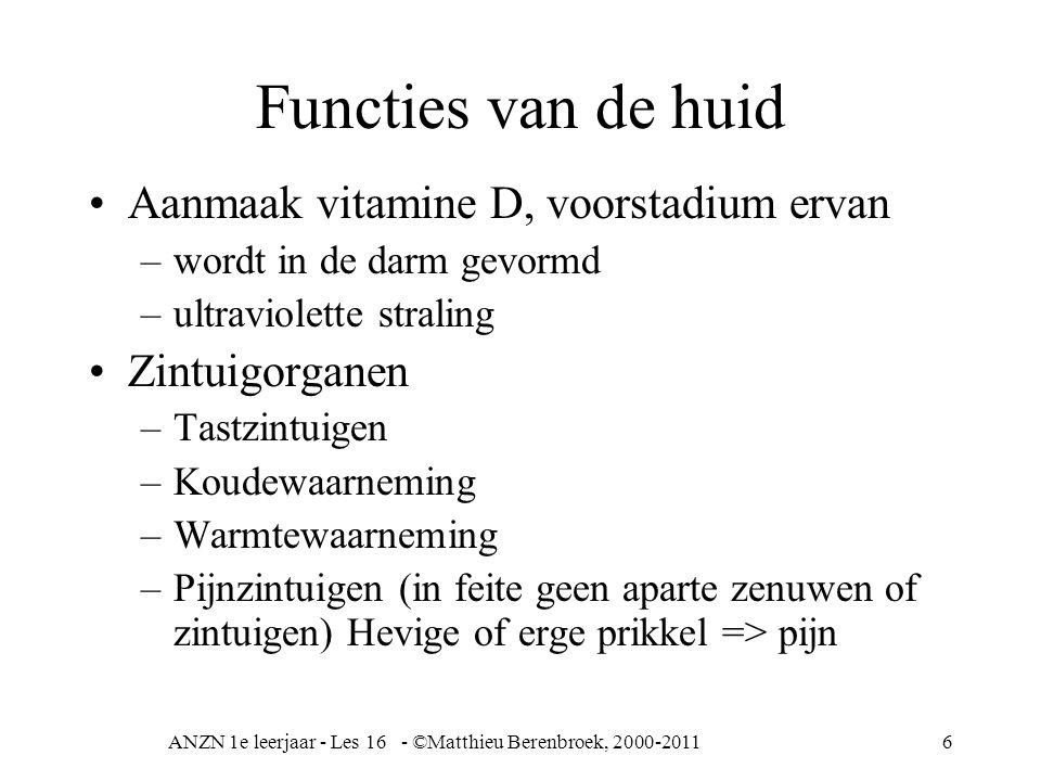 ANZN 1e leerjaar - Les 16 - ©Matthieu Berenbroek, 2000-20116 Functies van de huid Aanmaak vitamine D, voorstadium ervan –wordt in de darm gevormd –ult