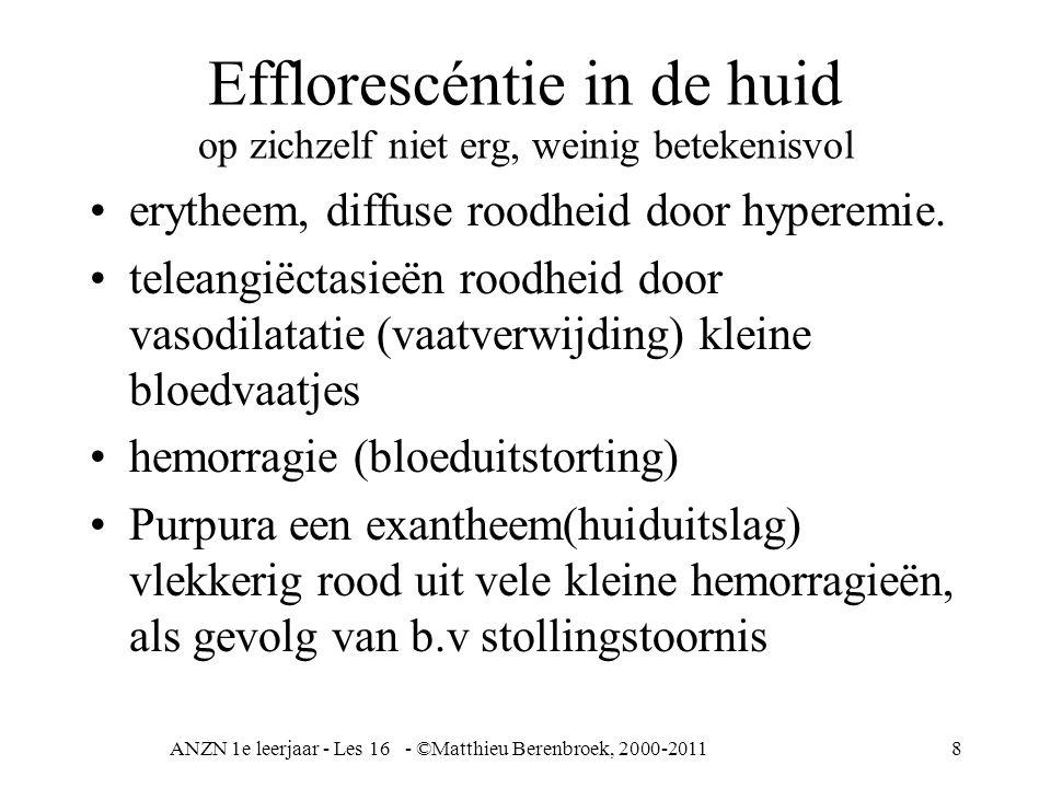 ANZN 1e leerjaar - Les 16 - ©Matthieu Berenbroek, 2000-20118 Efflorescéntie in de huid op zichzelf niet erg, weinig betekenisvol erytheem, diffuse roodheid door hyperemie.