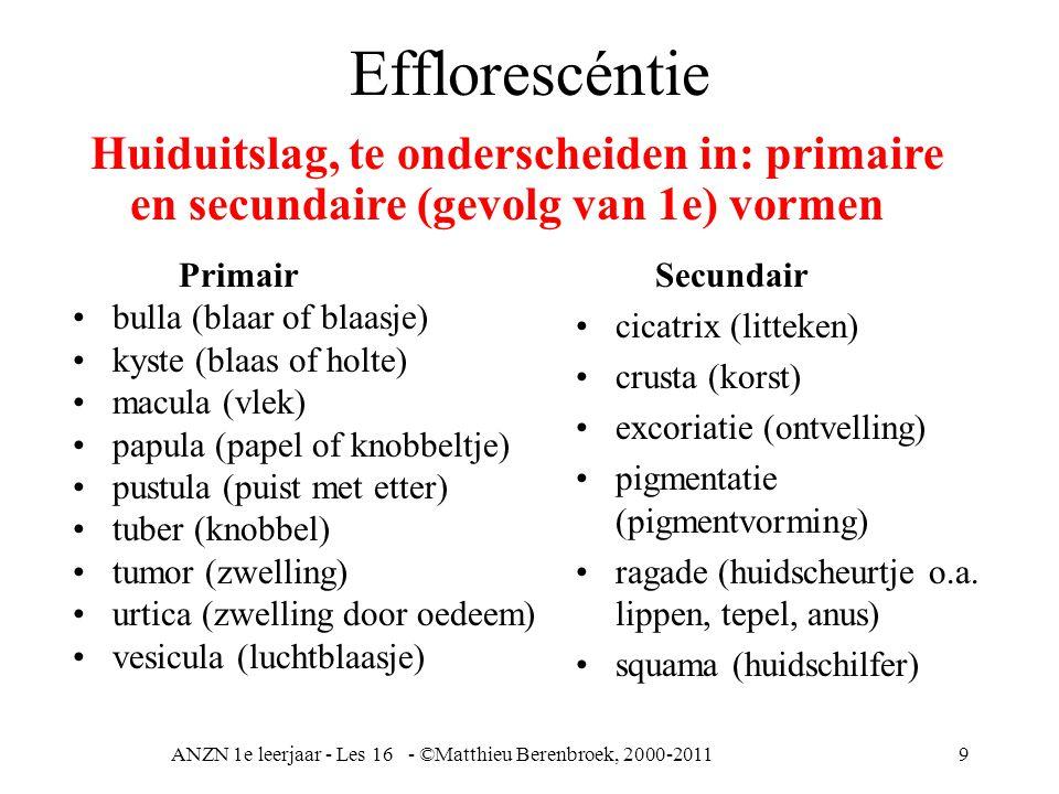 ANZN 1e leerjaar - Les 16 - ©Matthieu Berenbroek, 2000-20119 Efflorescéntie Primair bulla (blaar of blaasje) kyste (blaas of holte) macula (vlek) papula (papel of knobbeltje) pustula (puist met etter) tuber (knobbel) tumor (zwelling) urtica (zwelling door oedeem) vesicula (luchtblaasje) Huiduitslag, te onderscheiden in: primaire en secundaire (gevolg van 1e) vormen Secundair cicatrix (litteken) crusta (korst) excoriatie (ontvelling) pigmentatie (pigmentvorming) ragade (huidscheurtje o.a.