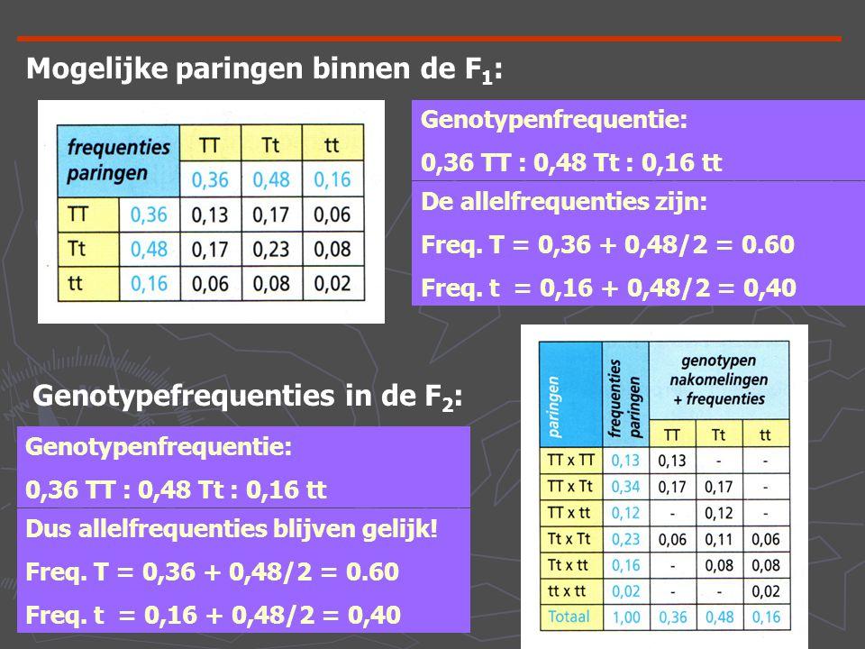 Mogelijke paringen binnen de F 1 : Genotypenfrequentie: 0,36 TT : 0,48 Tt : 0,16 tt De allelfrequenties zijn: Freq. T = 0,36 + 0,48/2 = 0.60 Freq. t =