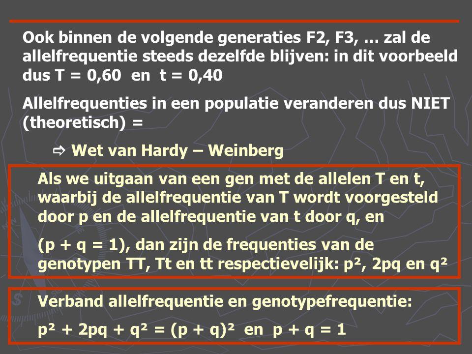 Ook binnen de volgende generaties F2, F3, … zal de allelfrequentie steeds dezelfde blijven: in dit voorbeeld dus T = 0,60 en t = 0,40 Allelfrequenties