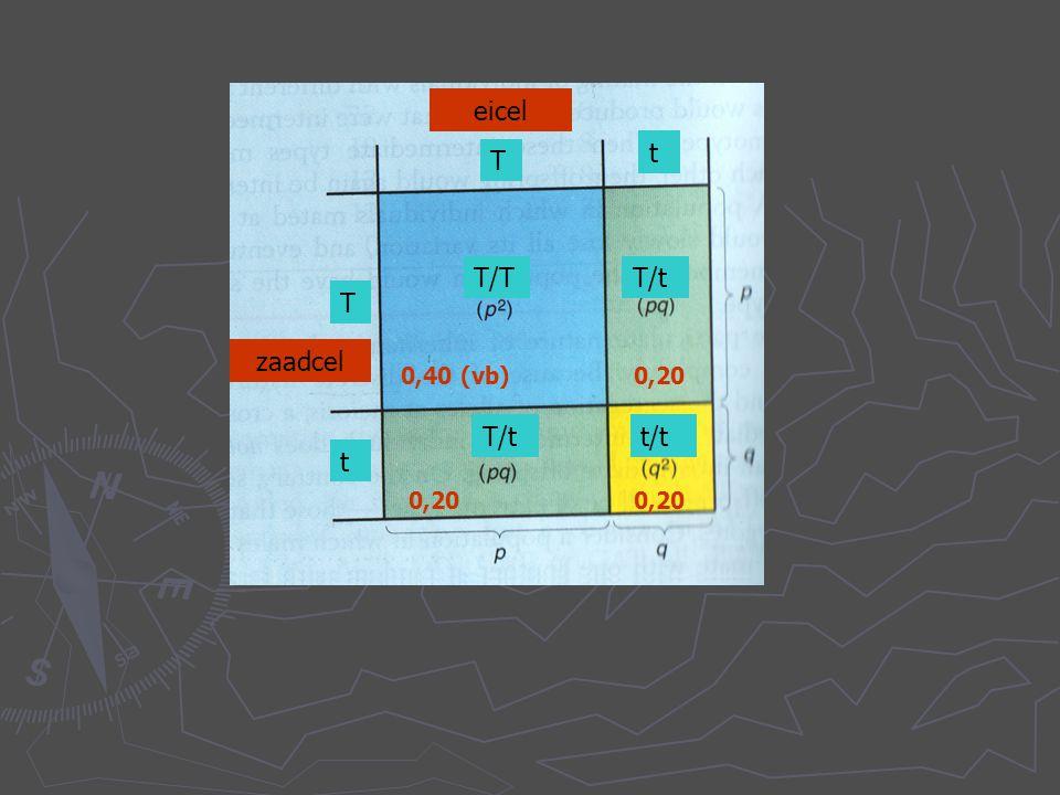 TT T/t t/t T/t T/T T T t t t/t T/t eicel zaadcel 0,40 (vb) 0,20