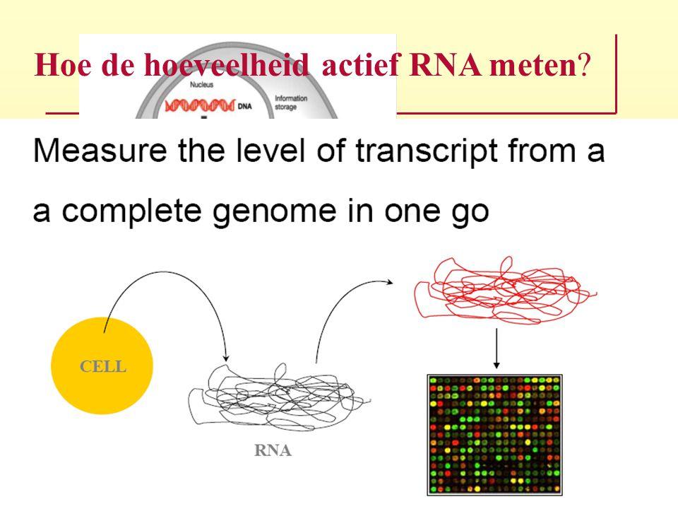 Hoe de hoeveelheid actief RNA meten?