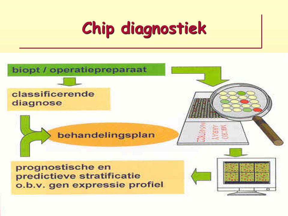 Chip diagnostiek