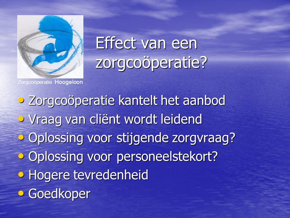 Zorgcoöperatie Hoogeloon Effect van een zorgcoöperatie.