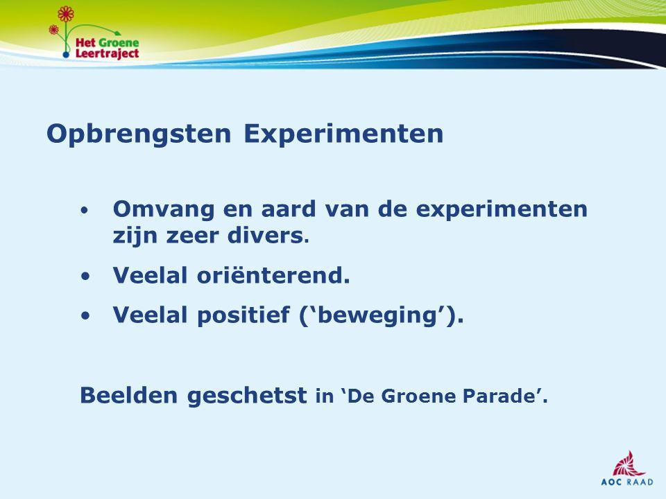 Opbrengsten Experimenten Omvang en aard van de experimenten zijn zeer divers. Veelal oriënterend. Veelal positief ('beweging'). Beelden geschetst in '