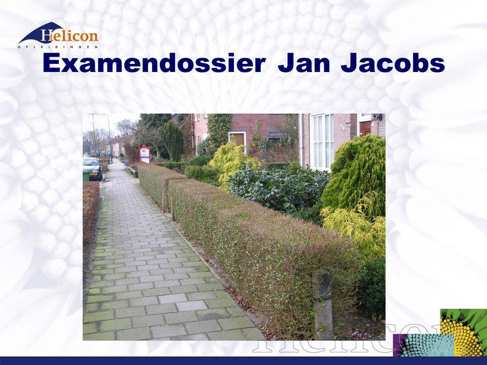 Examendossier Jan Jacobs