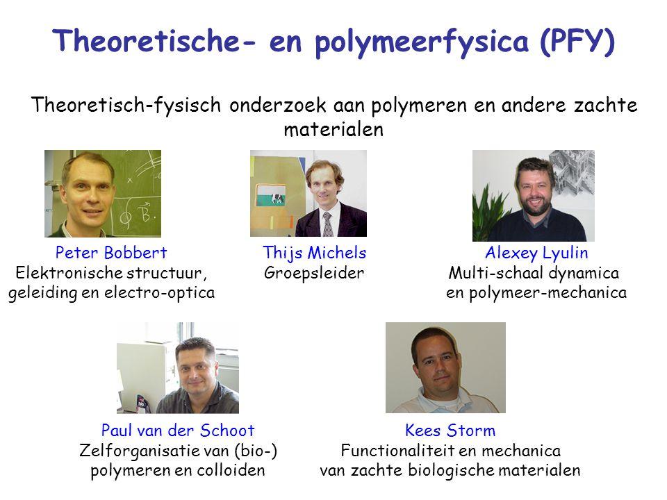 Theoretische- en polymeerfysica (PFY) Thijs Michels Groepsleider Paul van der Schoot Zelforganisatie van (bio-) polymeren en colloiden Alexey Lyulin Multi-schaal dynamica en polymeer-mechanica Peter Bobbert Elektronische structuur, geleiding en electro-optica Theoretisch-fysisch onderzoek aan polymeren en andere zachte materialen Kees Storm Functionaliteit en mechanica van zachte biologische materialen