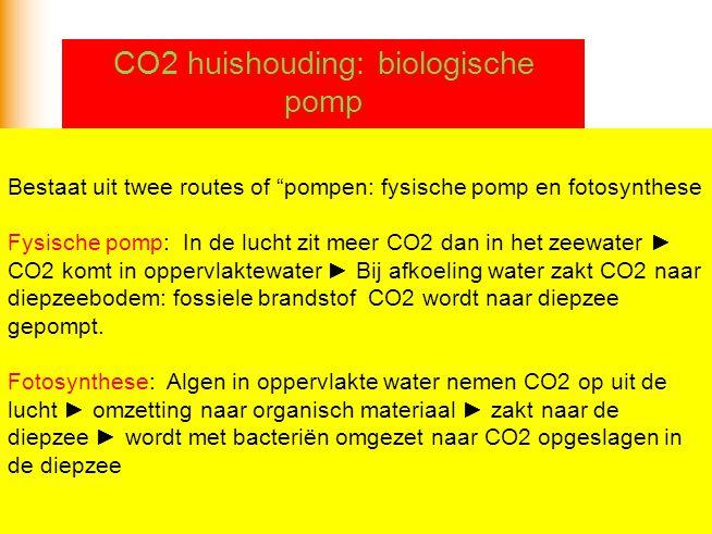 """Bestaat uit twee routes of """"pompen: fysische pomp en fotosynthese Fysische pomp: In de lucht zit meer CO2 dan in het zeewater ► CO2 komt in oppervlakt"""