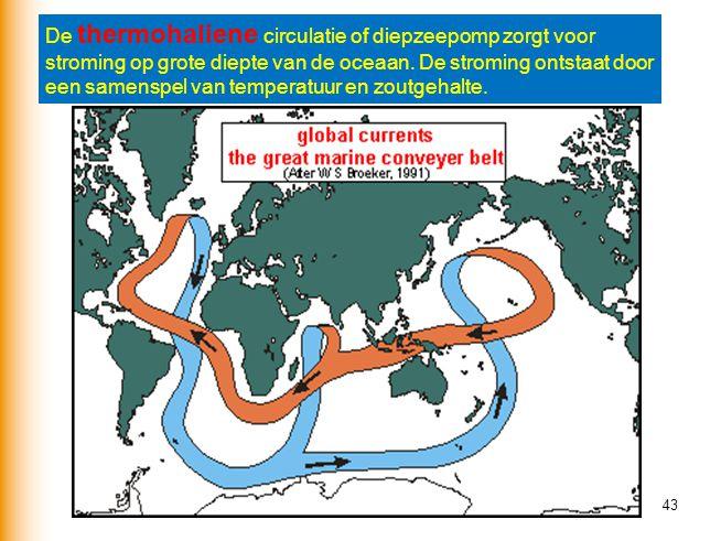 43 De thermohaliene circulatie of diepzeepomp zorgt voor stroming op grote diepte van de oceaan. De stroming ontstaat door een samenspel van temperatu