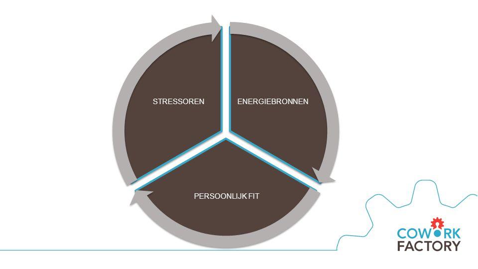 ENERGIEBRONNEN PERSOONLIJK FIT STRESSOREN
