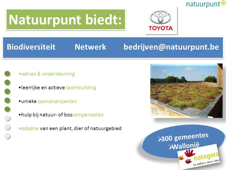 advies & ondersteuning leerrijke en actieve teambuilding unieke sponsorprojecten hulp bij natuur- of boscompensaties adoptie van een plant, dier of na