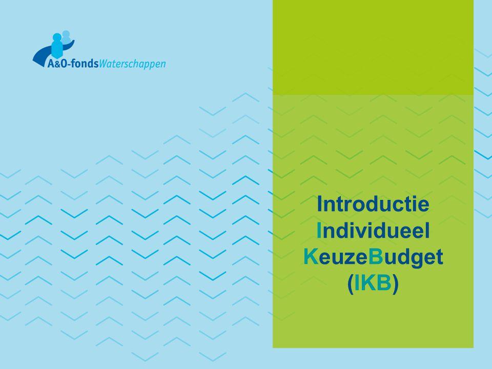 Individueel KeuzeBudget Minder regels Meer mogelijkheden Conform CAO-akkoord 2009-2011