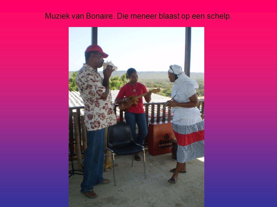 Muziek van Bonaire. Die meneer blaast op een schelp.